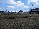 Yarai11_kuro04