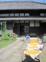 Umebashi1